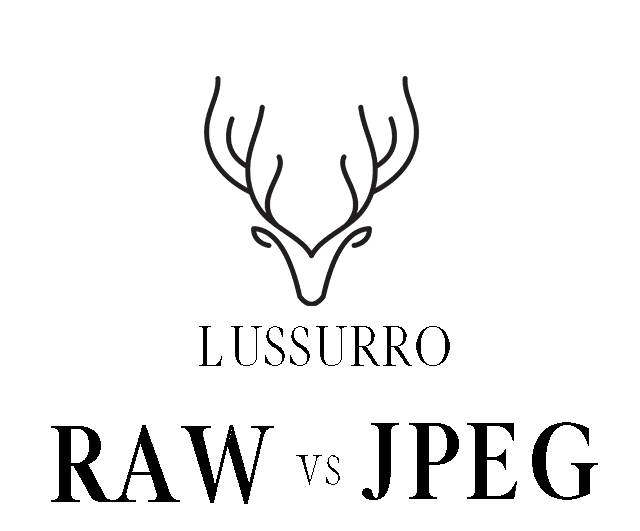 raw vs JPEG, should I shoot in RAW